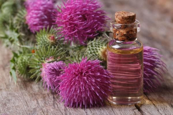 репейное масло и мед для волос